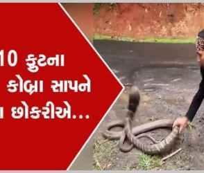 Video : 10 ફુટના આ કિંગ કોબ્રા સાપને જોઈને ભલભલાને પરસેવો છુટી જશે, આ મહિલાએ રમકડાની જેમ પકડી લીધો