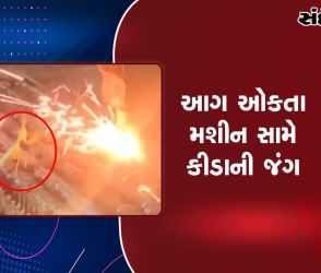કીડાએ 13 સેકન્ડ સુધી આગ ઓકતા મશીન સામે દેખાડી બહાદુરી, વીડિયો વાયરલ
