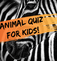 Multiple-Choice Quiz for Kids: Fun Animal Trivia Questions - WeHaveKids -  Family [ 1200 x 1200 Pixel ]