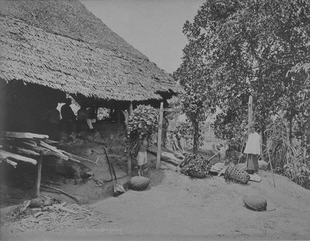 Chinese workers at gambier and pepper plantations are mostly of Teochew descent.
