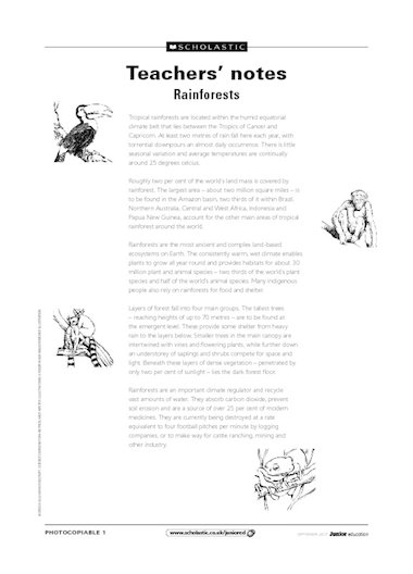 Rainforests – teachers' notes