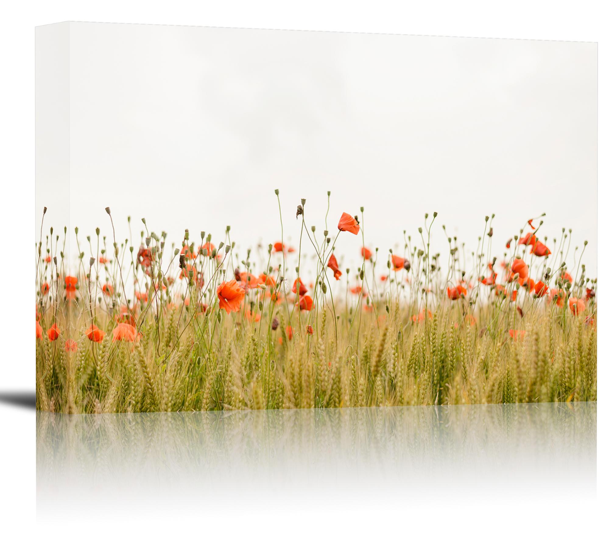 Canvas Prints Wall Art Summer Poppies Field At Sunset Https ...