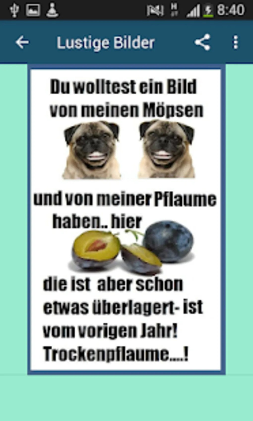 Lustige Bilder Whatsapp Kostenlos Nikolausgrüße Lustige Sprüche