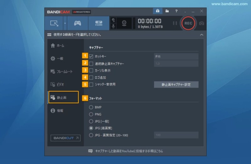 Bandicam 4.4.2.1550 Working File