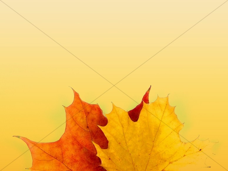 Falling Leaves Wallpaper Free Download Colors Of Fall Christian Background Worship Backgrounds