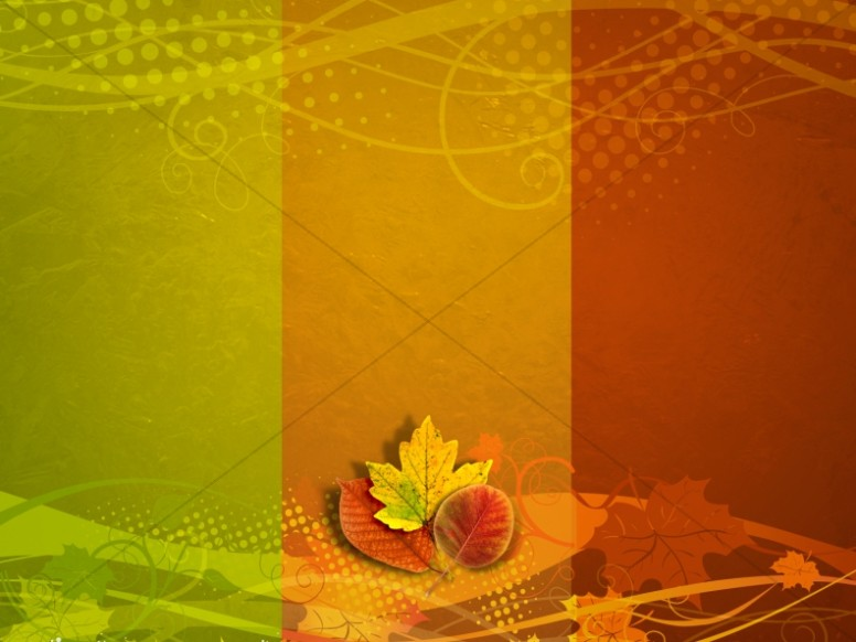 Fall Colors Wallpaper 1920x1080 Thanksgiving Colors Announceement Background Church