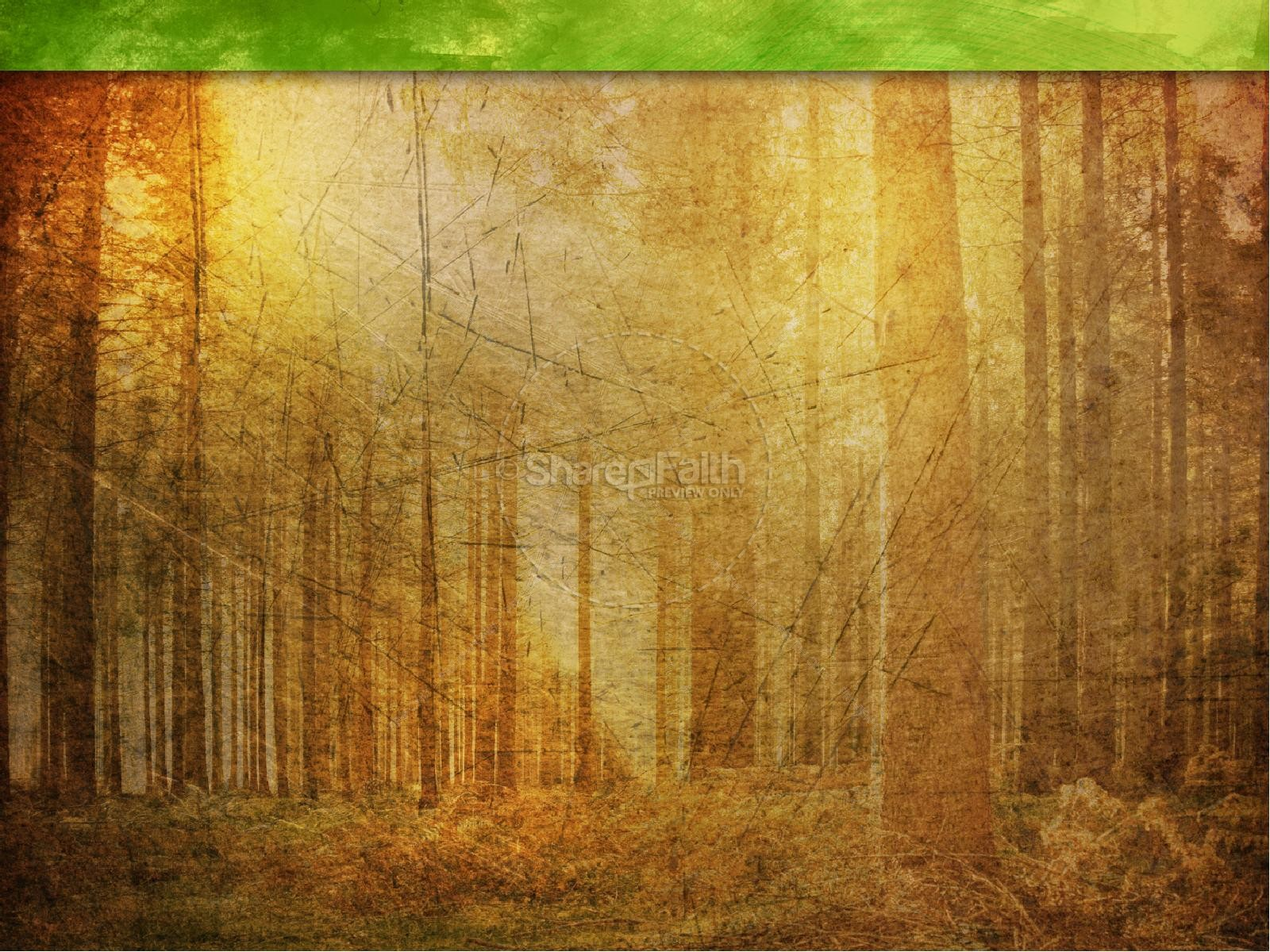 Fall Trees Background Wallpaper Faith Powerpoint Template