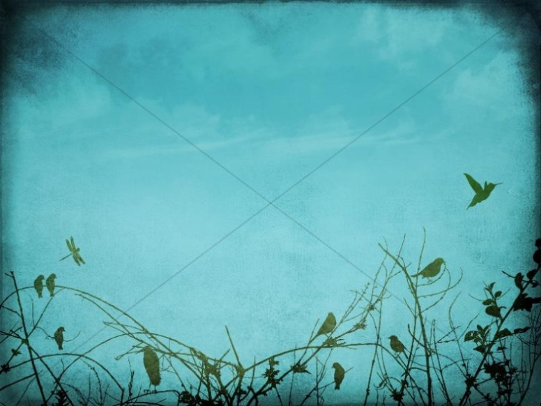 Christian Wallpaper Fall Offering Light Blue Worship Background Worship Backgrounds