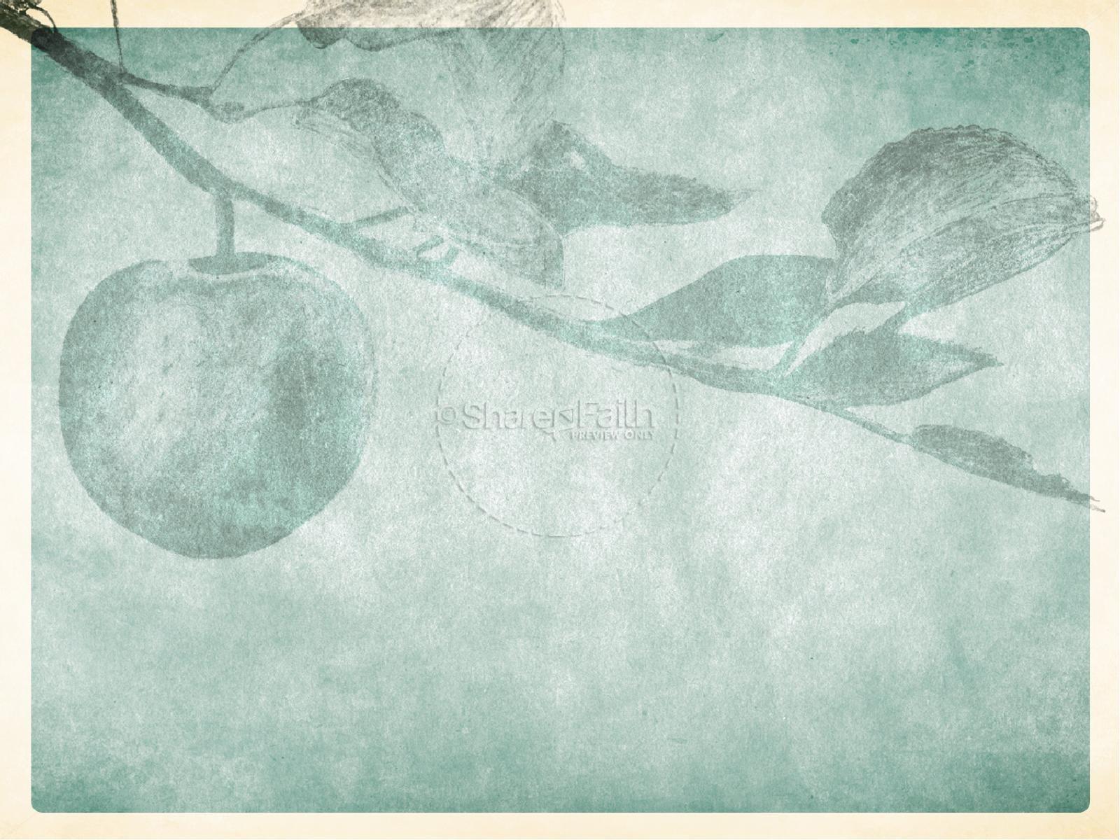 Fall Harvest Wallpaper Christian Bearing Fruit Powerpoint Sermon Slides