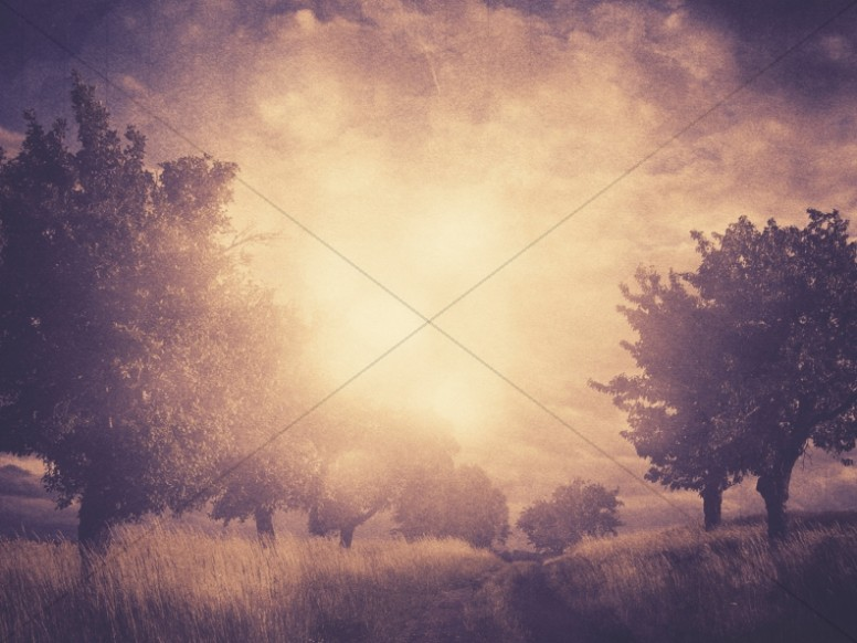 Fall Harvest Wallpaper Backgrounds Worship Backgrounds For Church By Sharefaith Page 7