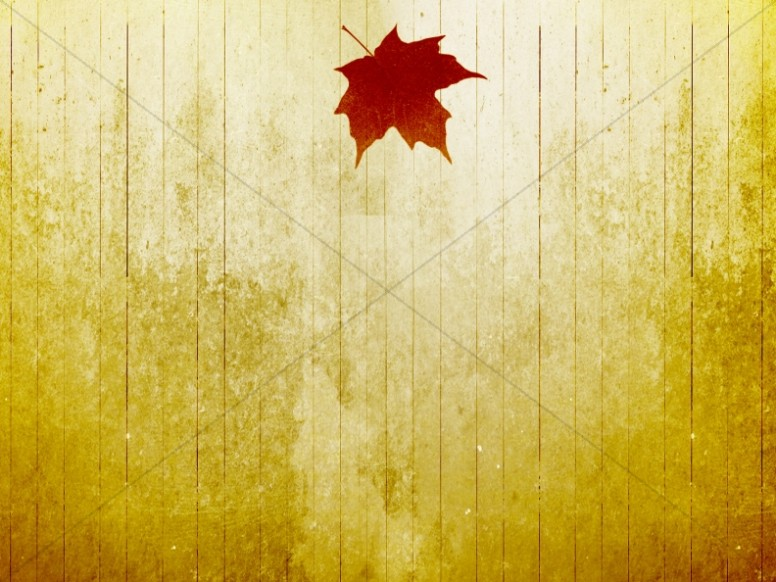 Autumn Leaf Fall Wallpaper Fall Leaf Christian Background Worship Backgrounds