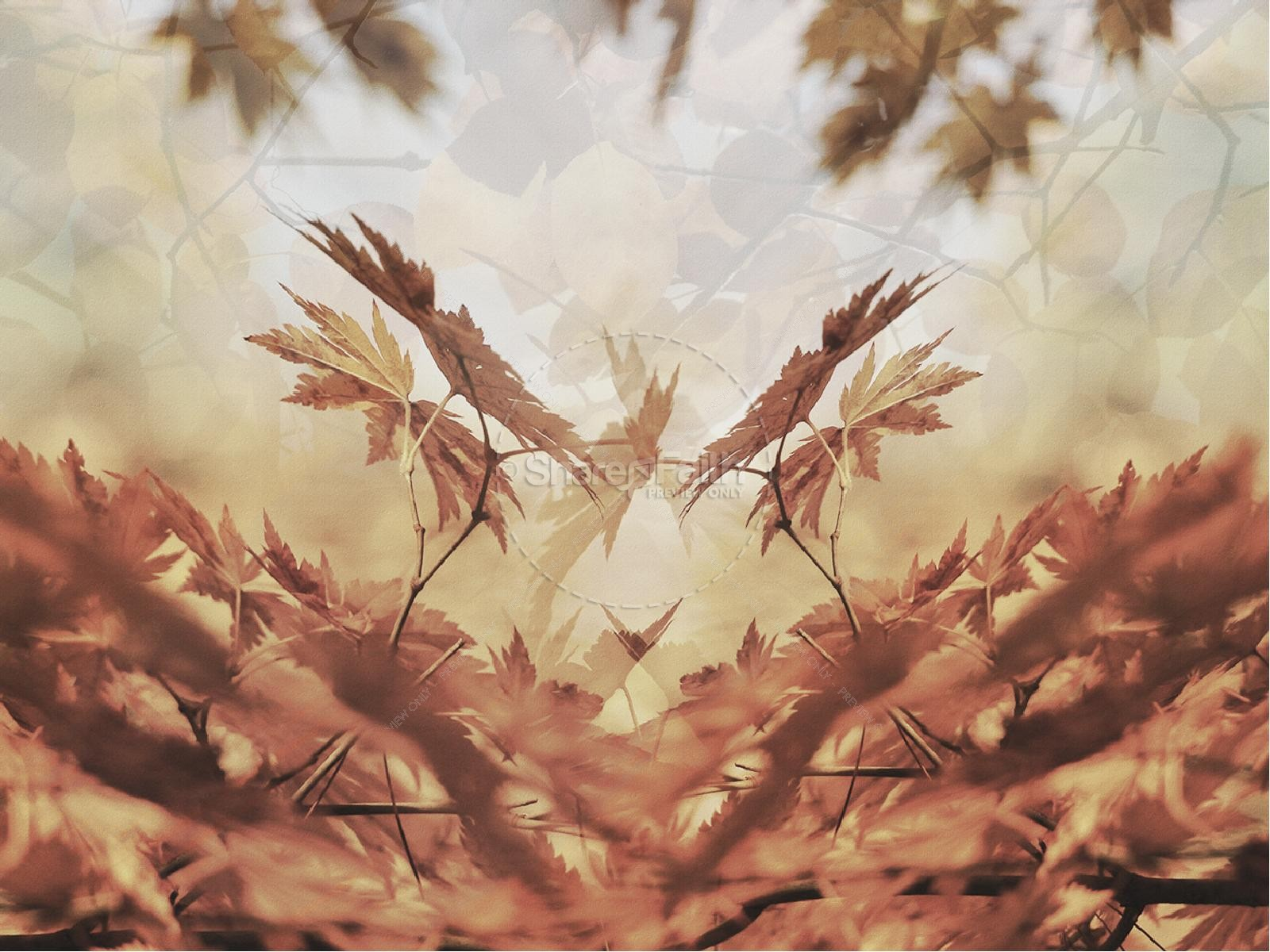 Autumn Falling Leaves Live Wallpaper Trust In The Lord Ministry Powerpoint Fall Thanksgiving
