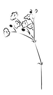 Church Flower Clipart, Church Flower Image, Church Flowers