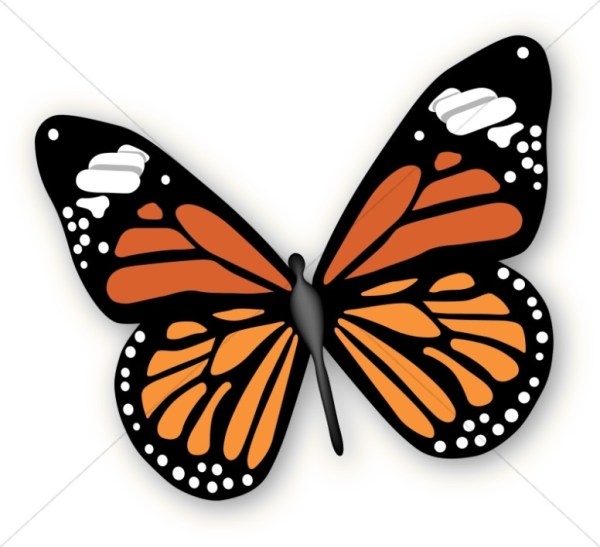 butterfly clipart graphics