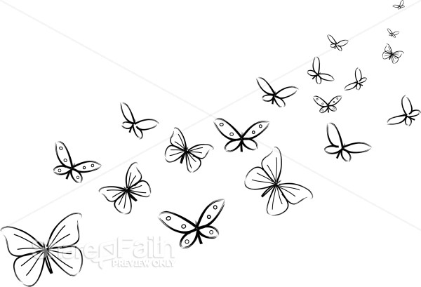 Bunch Of Black And White Butterflies Butterfly Clipart
