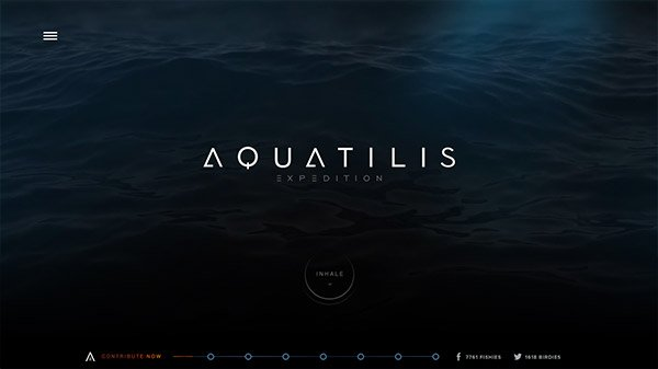 网页设计欣赏:AQUATILIS EXPEDITION