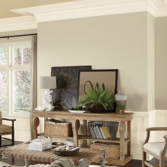 Ideas For Walls In Living Room Wall Paint Design Small Color Inspiration Gallery Sherwin Williams Whites