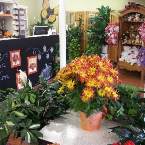 FLOWER DELIVERY Charlotte NC Local Florist