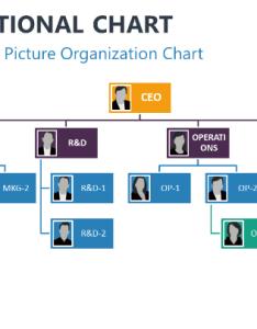 Picture organization chart powerpoint smartart also organizational charts for rh showeet