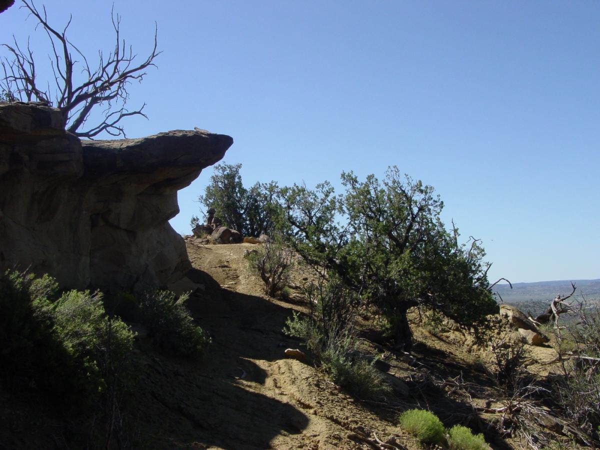 High Desert Trail System photo  SINGLETRACKSCOM
