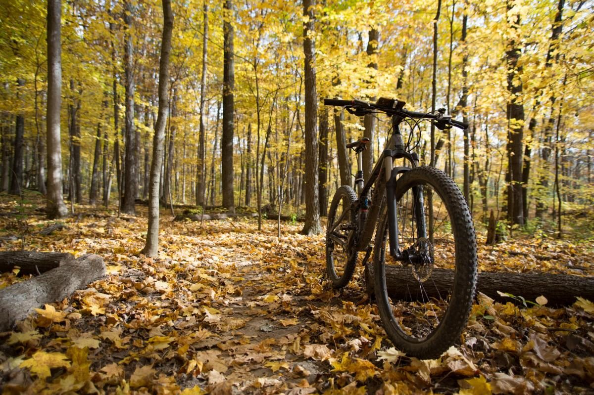 Five2Ride: 5 of the Best MTB Trails in Illinois - Singletracks Mountain Bike News