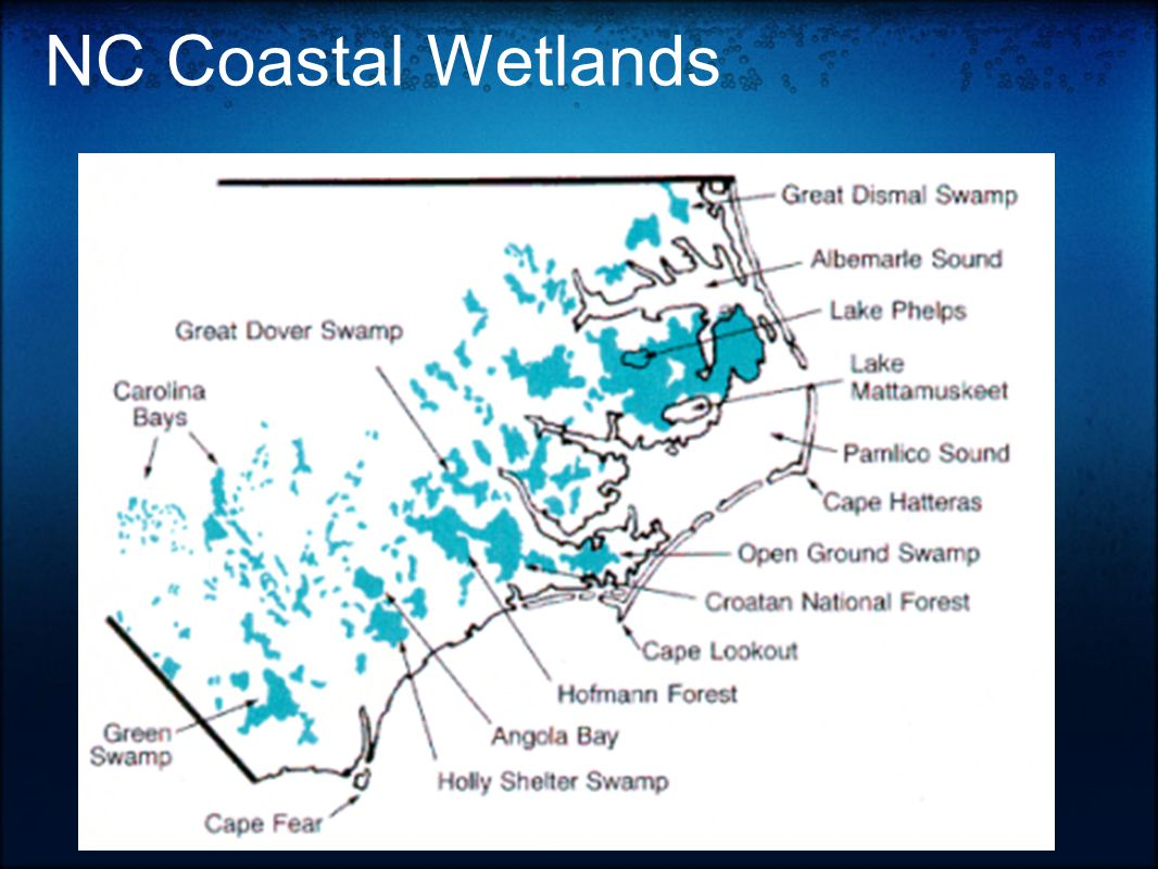 hight resolution of 26 nc coastal wetlands