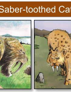 saber toothed cat also animals in terra tempo ice age cataclysm each animal is listed on rh slideplayer