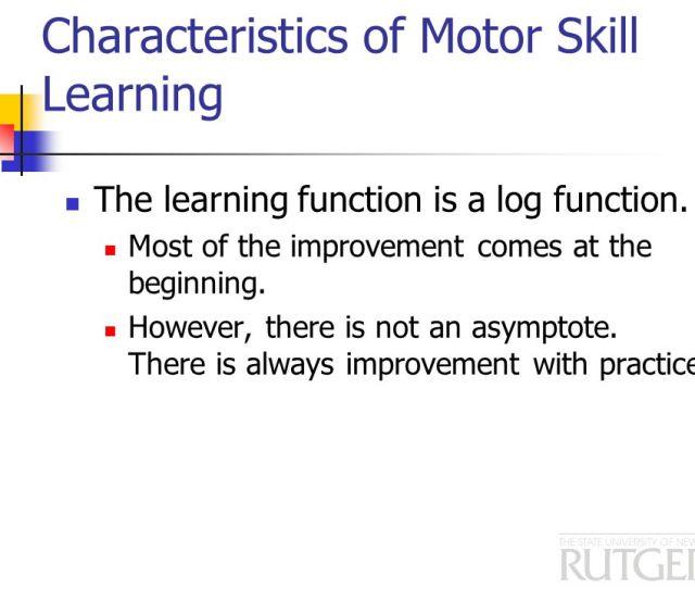 What Is A Perceptual Motor Skill