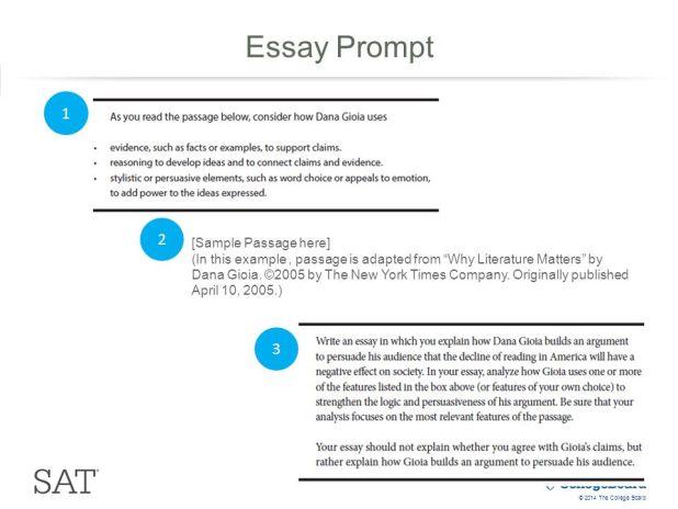 College board essay prompts hepatitze