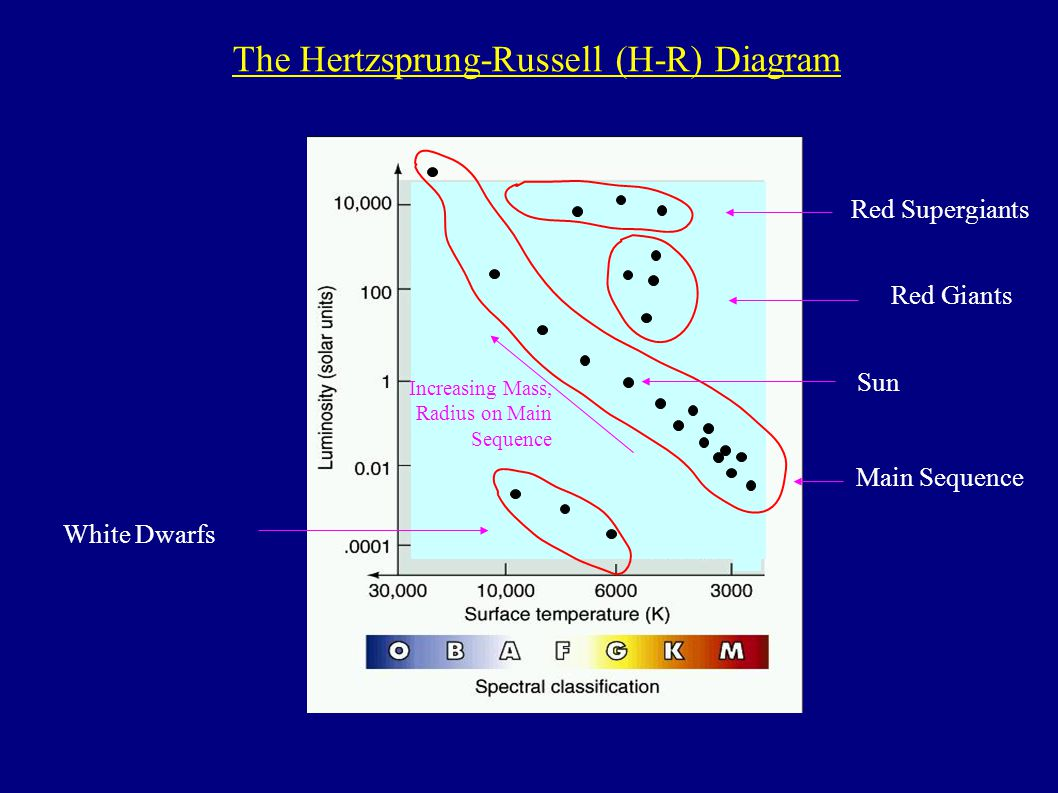 hight resolution of 1 main sequence white dwarfs red giants red supergiants increasing mass radius on main sequence the hertzsprung russell h r diagram sun