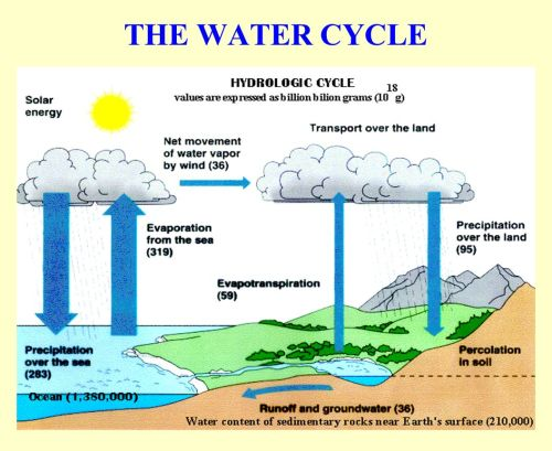 small resolution of 7 the water cycle