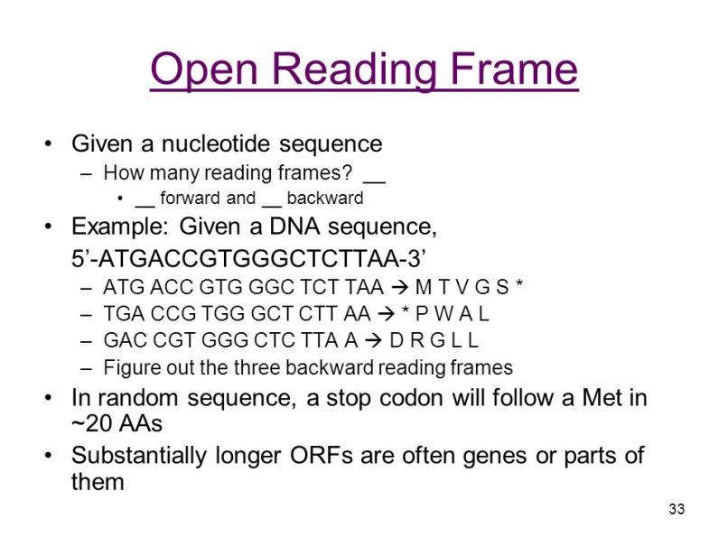 open reading frame biology | Frameswalls.org
