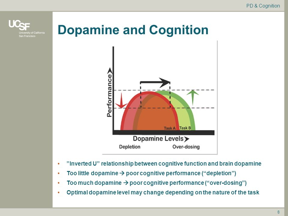 Image result for dopamine cognitive