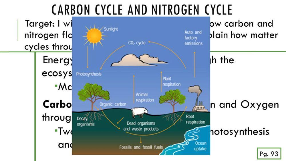 medium resolution of 3 carbon