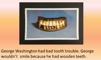 Does George Washington Really Have Wooden Teeth Wooden Thing