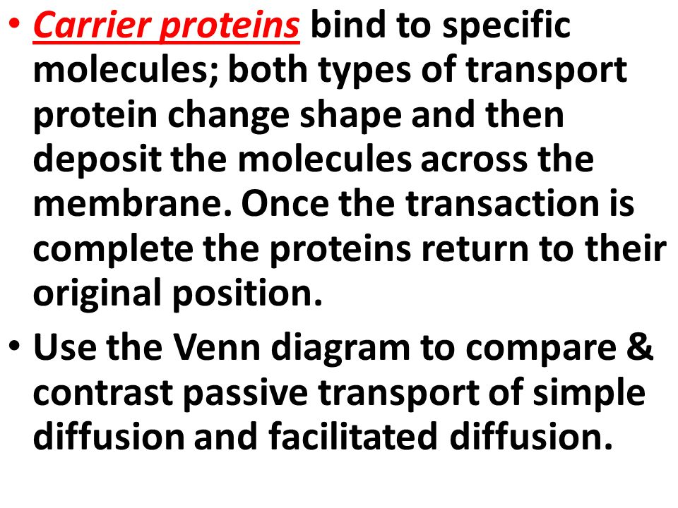 create a venn diagram comparing osmosis and diffusion 98 jeep wrangler speaker wiring active transport passive carrier proteins bind to specific molecules both types of protein change shape then