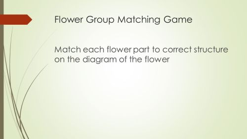 small resolution of 5 flower group matching game match each flower part to correct structure on the diagram of the flower