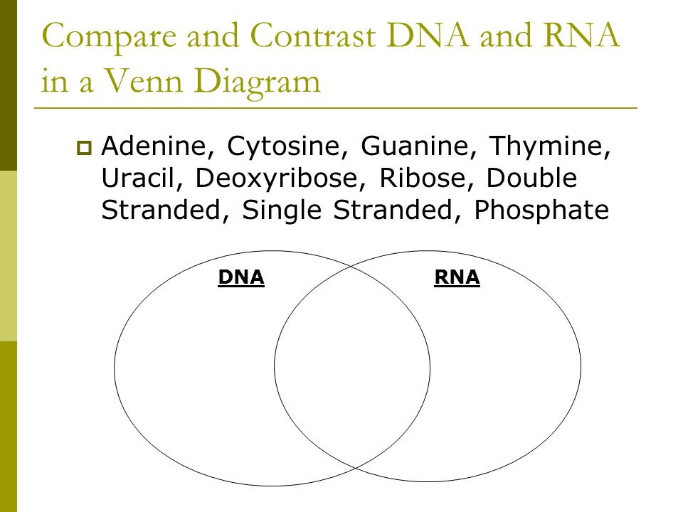 venn diagram comparing dna and rna leviton sureslide dimmer wiring compare lara expolicenciaslatam co golfclub