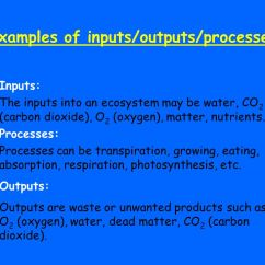 Diagram With Inputs And Outputs Of Photosynthesis Process 3 Phasen Strom Introduction To Ecosystems What Is A System Set 4