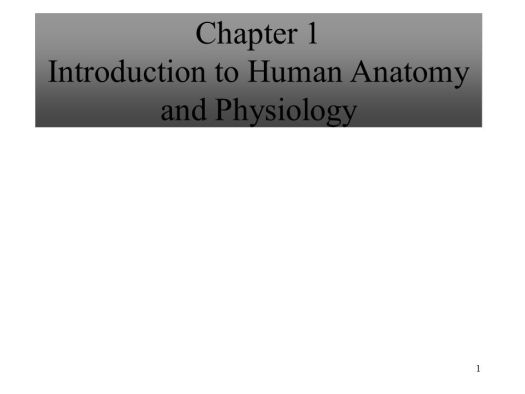 Chapter 1 Introduction To Human Anatomy And Physiology Ppt ...