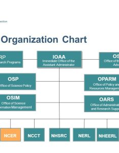 ord organization chart also office of research and development national center for environment rh slideplayer