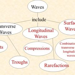 Venn Diagram Of Transverse And Longitudinal Waves Porsche 911 Radio Wiring Compu Barca