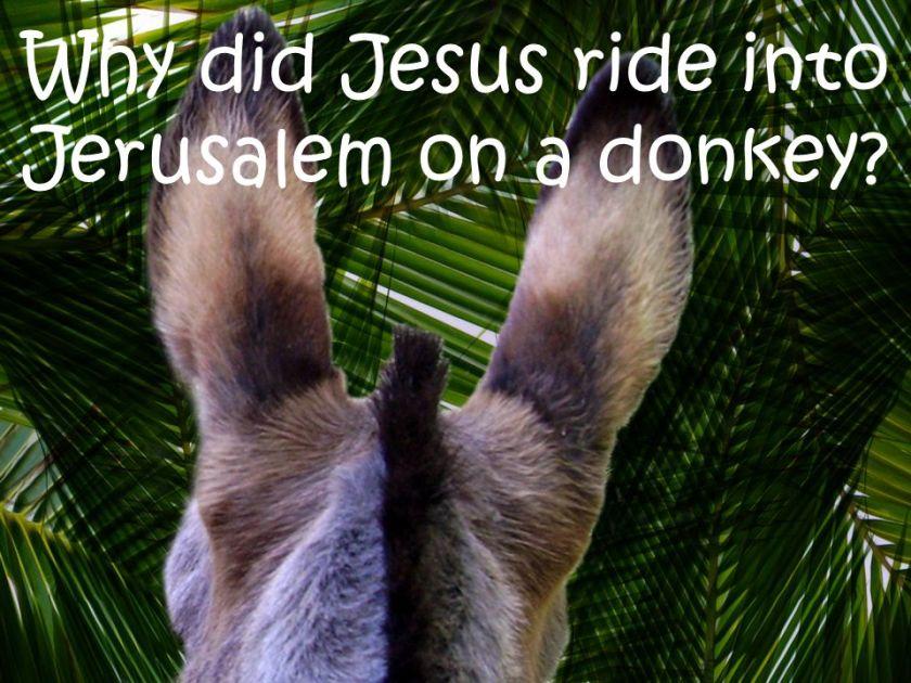 Image result for Jesus rides into Jerusalem