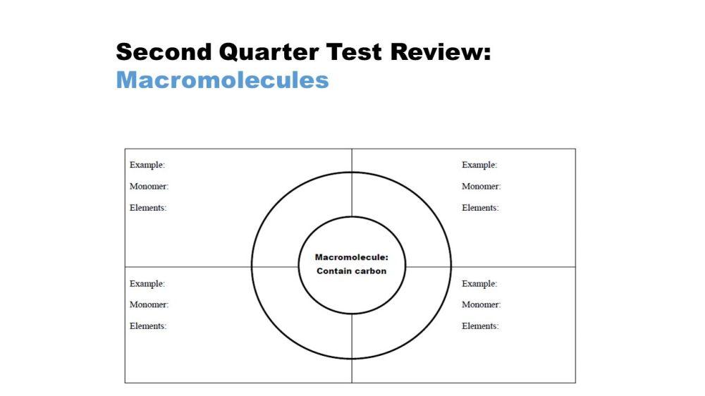 medium resolution of 2 second quarter test review macromolecules