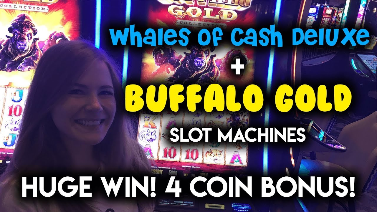 Buffalo gold slot machine strategy