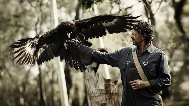 Actor Don Hany and wedgetail eagle Bart on the Kyneton set of the movie Healing.
