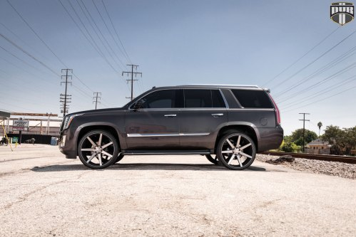 small resolution of custom escalade