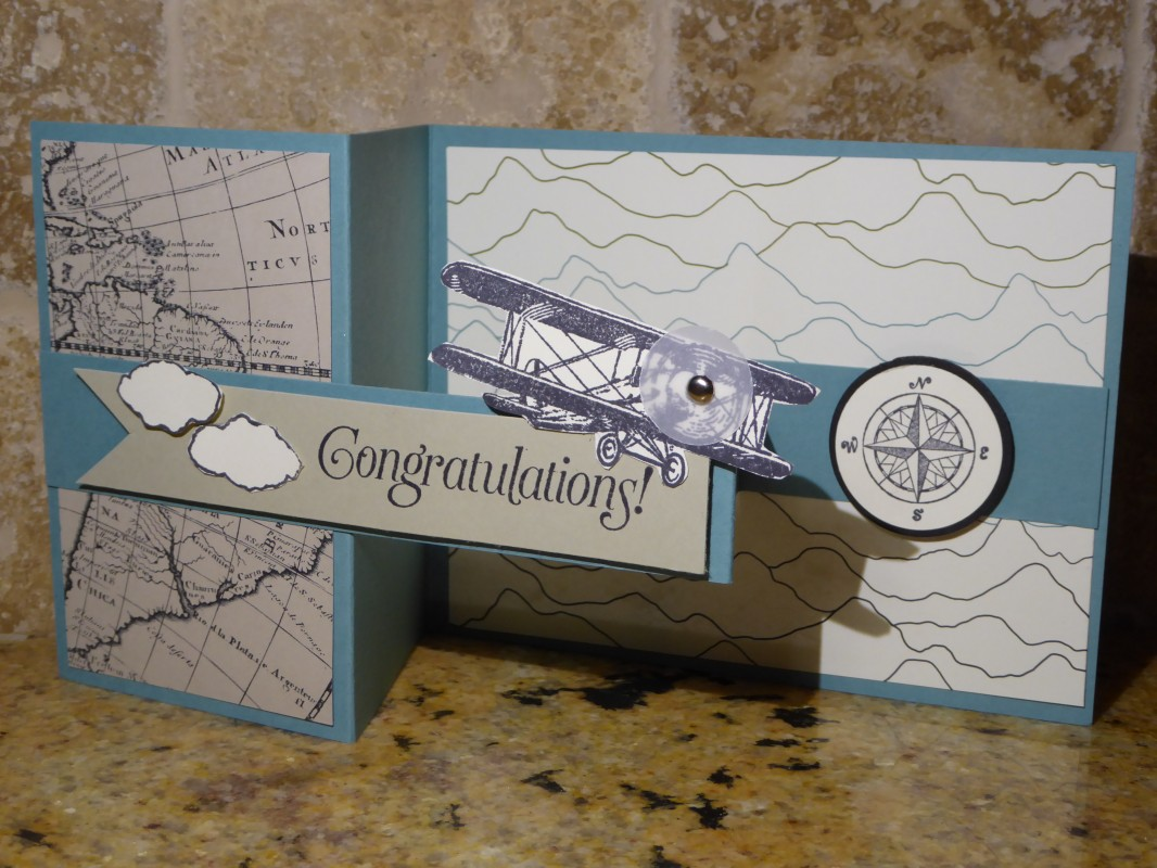 Double Z Fold Card By Jo1171 At Splitcoaststampers