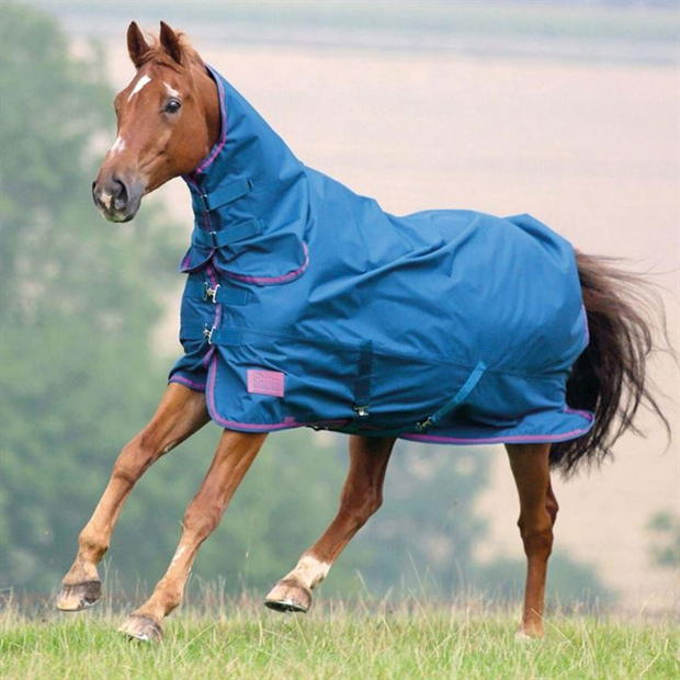 Shires  Tempest Original 50gm Combo Turnout  Turnout Rugs