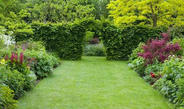 Alan Titchmarsh Five Steps Guide For A Manicured Lawn Express Co Uk